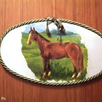 stanza del cavallo